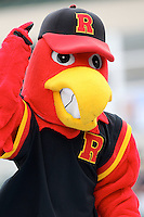 Spikes, the Rochester Red Wings mascot, during a game vs. Norfolk Tides at Frontier Field in Rochester, New York;  May 31, 2010.   Norfolk defeated Rochester by the score of 2-1.  Photo By Mike Janes/Four Seam Images