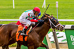 SEPT 07, 2019 :   Alpha Sixty Six #7, with John Velazquez, outduels Hemlock to win a MSW for 2 year olds, going 6 1/2 furlongs, at Belmont Park, in Elmont, NY, Sept 7, 2019.  Sue Kawczynski_ESW_CSM,