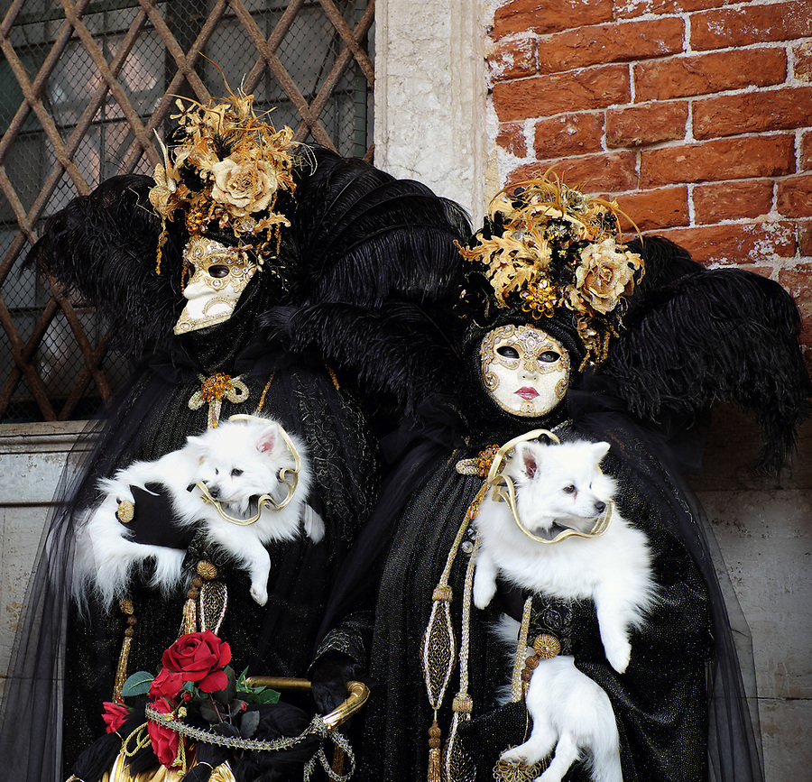 Couple dressed in traditional costume for Venice Carnival holding dogs standing at Doge's Palace, Piazza San Marco, Venice, Veneto, Italy