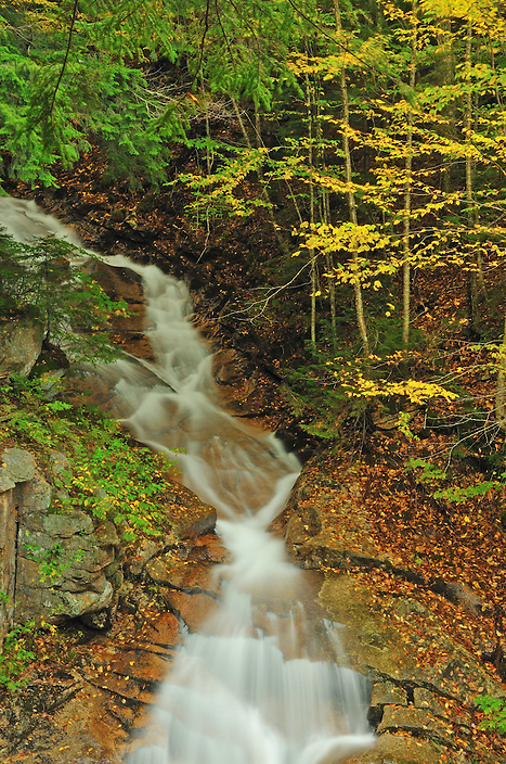 Liberty Cascade is another great reason to take the tour of the Flume Gorge in Franconia Notch State Park. Along with seeing Avalanche Falls, you get to see  Libery Cascade, making for a waterfall two-for-one !