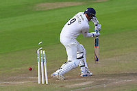 David Masters of Essex is bowled out by Timm van der Gugten during Glamorgan CCC vs Essex CCC, Specsavers County Championship Division 2 Cricket at the SSE SWALEC Stadium on 23rd May 2016