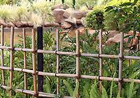 Stock image of wooden fence surrounding garden landscape.