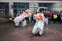Lion Dance, Vietnamese New Year Festival 2020, Seattle Center, WA, USA.