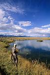 Fly fishing the McCoy spring creek, Montana