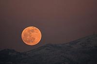 2020 01 10 WolfMoon Penteli Mountain in Athens Greece.