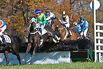 05 November2011: Saint Dynaformer and Jacob Roberts (tan and navy) win The Constitution Hurdle at Montpelier Hunt Races in Orange, Va. Saint Dynaformer is owned by Kinross Farm and trained by Neil Morris.     Susan M. Carter/Eclipse Sportswire