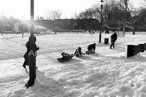 Brooklyn, New York<br /> Park Slope<br /> February 9, 2013<br /> <br /> Sledding in Prospect Park after a big snow hits the east coast.