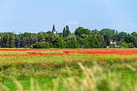 Blühender Klatschmohn (Papaver rhoeas) vor der Dorfkirche und Autobahnkirche Zeestow, Brieselang, Havelland, Brandenburg, Deutschland