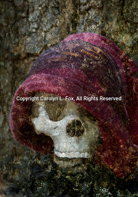 A skull is partially covered by a purple scarf as it hangs on a tree.