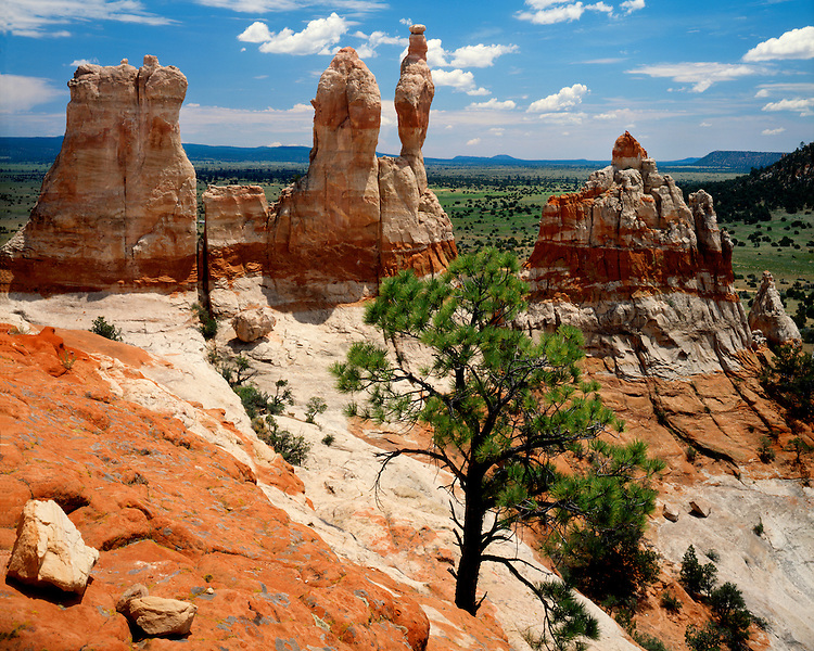 Red rock sandstone formations in the Zuni Mountains, NM