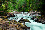 The Sol Duc River, known for its pristine rainforest canyon and hot springs, drians the north end of Olympic National Park, Washington State.  Wild and Scenic River. Olympic Peninsula
