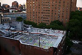 New York New York<br /> June 21, 2020<br /> <br /> An artist paints her roof in support of the Black Lives Maters protests in lower Manhattan. <br /> <br /> New York enters phase 2 this week and opens shops many of these will quickly disappear.
