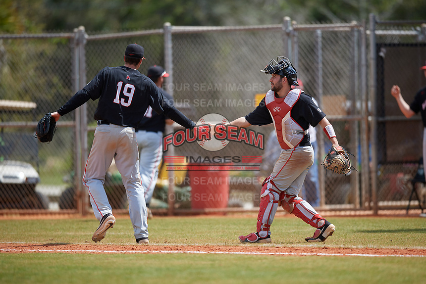 Ball State Cardinals pitcher Kyle Nicolas (19) and catcher Chase Sebby (20) during a game against the Saint Joseph's Hawks on March 9, 2019 at North Charlotte Regional Park in Port Charlotte, Florida.  Ball State defeated Saint Joseph's 7-5.  (Mike Janes/Four Seam Images)