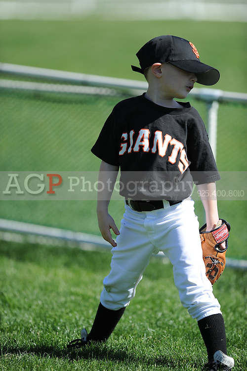 The T-Ball Giants of Pleasanton National Little League  March 28, 2009.