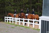 2018 Equine Photos