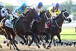 June 6, 2015: Start of the Belmont Stakes: from left, American Pharoah, Tale of Verve, and Mubtaahij.  American PharoahVictor Espinoza up, wins the 147th running of the Grade I  Belmont Stakes and with it the Triple Crown at Belmont Park, Elmont, NY.  Joan Fairman Kanes/ESW/CSM