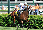10 April 30: Doubles Partner (no. 6), ridden by Garrett Gomez and trained by Todd Pletcher, wins the 7th running of the grade 2 American Turf Stakes for three year olds at Churchill Downs in Louisville, Kentucky.