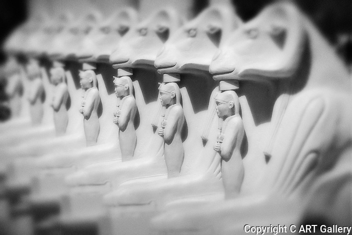 In Line, Luxor statues, NV.