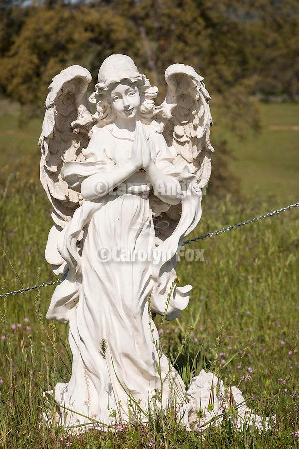 Angel in the historic 19th century Gold Rush era City Cemetery, Chinese Camp, Calif.