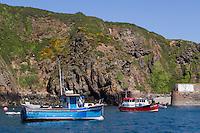 Royaume-Uni, îles Anglo-Normandes, île de Sark (Sercq) Port de Creux Harbour // United Kingdom, Channel Islands, Sark Island (Sercq): Creux Harbour
