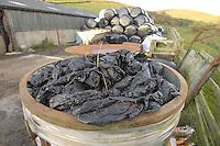 Waste farm plastic.