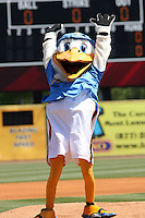 Splash Pelican, mascot  of the Myrtle Beach Pelicans before a game against the Frederick Keys on May 2, 2010 in Myrtle Beach, SC.