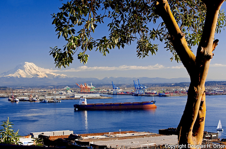 Commencement Bay with Mount Rainier in background, as seen from SR 509.  Commencement Bay's history of industry and shipping has led it to designation as one of the most pulluted waterways in the nation.  Commencement Bay Nearshore/Tidelands Superfund Site.