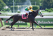 Derby winner Mine That Bird's little brother, Brother Bird, shines at the Spa.
