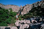 Italie. Italia. Sardaigne. Sardinia.Lappiaz calcaire au pied du Mont Tiscali