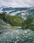 Blue Ridge Parkway, VA: Fog settles in the folded hills of the Appalachian Mountains in early spring from the overlook on Twenty Minute Cliffs