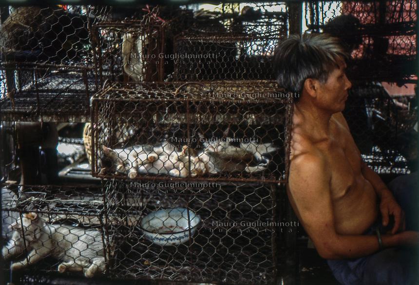 Cina, Canton, venditore appoggiato a gabbie con gatti in vendita per uso alimentare <br /> cages with cats for sale for food use