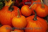Tom Mackie, STILL LIFE STILLEBEN, NATURALEZA MORTA, photos+++++,GBTM080349-1,#i#, EVERYDAY ,autumn,fall ,pumpkin,pumpkins
