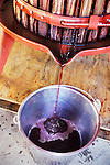 Squeezing the grapes into juice for wine using a hand press, Amador County, Calif.