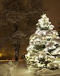 Idaho, North, Idaho Panhandle, Kootenai County, Coeur d'Alene. A beautiful lighted tree glows through a blanket of snow beside a snow covered sidewalk at night.