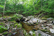 Walker Brook in Woodstock, New Hampshire during the summer months. Behind the large boulders is the location of where a trestle along the Elbow Pond Branch of the Gordon Pond Railroad crossed the brook. Owned by the Johnson Lumber Company (George Johnson) this was a logging railroad in operation from 1907-1916.