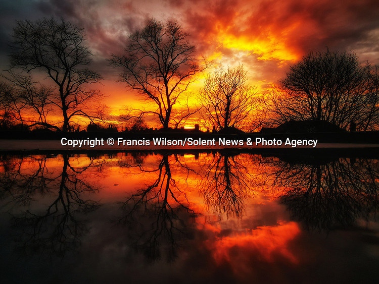 """Pictured:  A MOBILE MASTERPIECE.....WELL FRAMED.  The stunning sunset reflection was captured by window fitter Francis Wilson using only a mobile phone and a puddle.  <br /> <br /> Photos show the reflection of an extraordinary sunset reflected in a puddle - taken by a window fitter on his mobile phone.  Bare trees are seen in the orange sky beyond the roof where the snaps were taken by Francis Wilson, who only took up photography in March of this year.<br /> <br /> Despite his inexperience and lack of a digital camera, the 38 year old rushed to the roof of the house where he was working and captured the stunning photo on this week in Wakefield, West Yorks.  Mr Wilson, from nearby Huddersfield, said: """"Over the past few years I've got the latest phone, and I've always been quite creative.  SEE OUR COPY FOR DETAILS.<br /> <br /> Please byline: Francis Wilson/Solent News<br /> <br /> © Francis Wilson/Solent News & Photo Agency<br /> UK +44 (0) 2380 458800"""