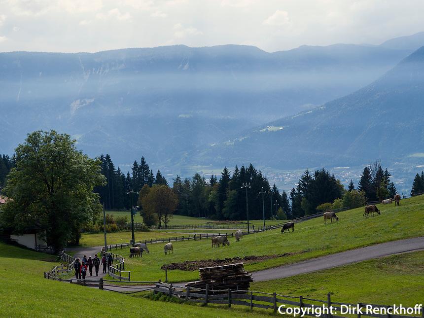 Wanderer bei Vöran, Region Südtirol-Bozen, Italien, Europa<br /> hiker  near Vöran, Region South Tyrol-Bolzano, Italy, Europe