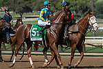 ARCADIA, CA. SEPTEMBER 30:  #5 Lemoona, ridden by Flavien Prat,, in the post parade of the Zenyatta Stakes (Grade l) on September 30, 2018, at Santa Anita Park in Arcadia, CA.(Photo by Casey Phillips/Eclipse Sportswire/CSM)