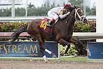 January 24, 2015: Khozan ridden by Javier Castellano and owned by Al Shaqab Racing wins a Maiden race 3 year olds at Gulfstream Park. Gulfstream Park, Hallandale Beach (FL). Arron Haggart/ESW/CSM