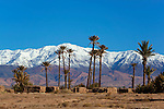 Morocco, Souss-Massa-Draa, Skoura Oasis: Oasis palm grove with snow-capped High Atlas mountains in distance | Marokko, Souss-Massa-Draa, Skoura Oasis: Palmenhain Oase mit den schneebedeckten Gipfeln des Hohen Atlas Gebirges im Hintergrund