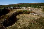 Ty Mawr Hut Circle, below Holyhead  Mountain Holyhead Anglesey Wales UK