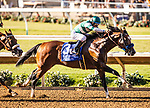 JULY 27: Cistron with Victor Espinoza up wins the Bing Crosby Stakes at The Del Mar Thoroughbred Club in Del Mar, California on July 27, 2019. Evers/Eclipse Sportswire/CSM