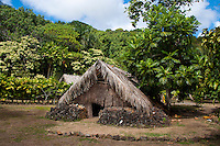 Recreated Hawaiian hut used for a sleeping house next to a breadfruit tree, Kamokila Hawaiian Village, Wailua River Valley, Kauai.