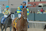 Louies Flower (FL) with jockey Luis S. Quinonez aboard after coming in 12th in the running of the Southwest Stakes (Grade III) at Oaklawn Park in Hot Springs, Arkansas on February 17, 2014. (Credit Image: © Justin Manning/Eclipse/ZUMAPRESS.com)