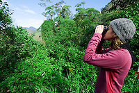 Birdwatching, Los Quetzales, Parque Internacional La Amistad, Cerro Punta, Volcan Baru, Panama