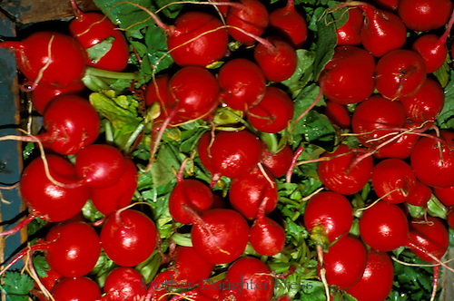 Locally grown radishes brighten the market offerings.