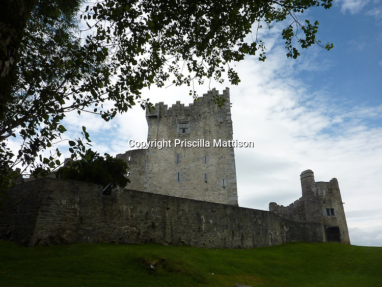 County Kerry, Republic of Ireland - Juy 19, 2010:  Ross Castle rises up beyond a tree.