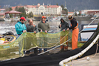 Commercial fishermen mend purse seine nets damaged during the opening Pacific Herring fishery in Sitka Sound, southeast Alaska.