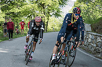 Filippo Ganna (ITA/INEOS Grenadiers) coming back down from the finish, warning bystanders with his whistle <br /> <br /> 104th Giro d'Italia 2021 (2.UWT)<br /> Stage 19 from Abbiategrasso to Alpe di Mera (Valsesia)(176km)<br /> <br /> ©kramon