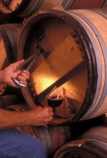 Special tool forces wine from hole in barrel for winemaker to test